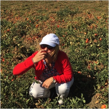 Sharon biting tomato field
